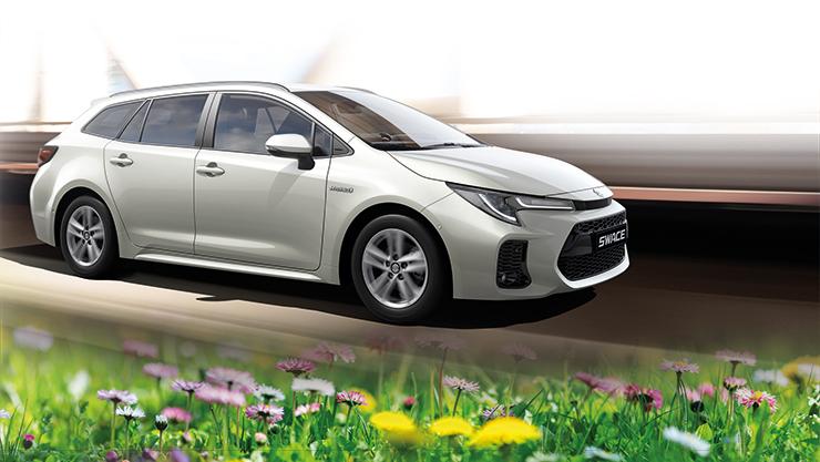 Frühlingscheck Suzuki Swace